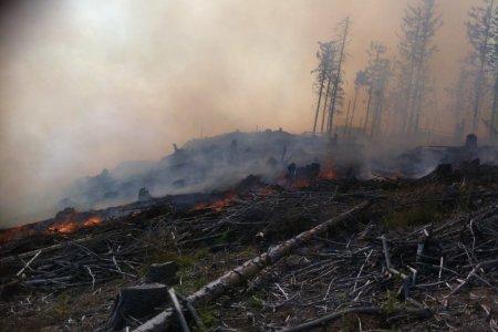 V Poprade stále so zvýšeným nebezpečenstvom vzniku lesných požiarov!