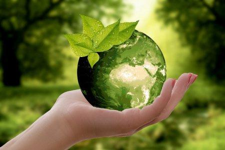 RANNÁ ŠTVORKA: Rozhliadnime sa okolo seba, oslavujeme Deň Zeme