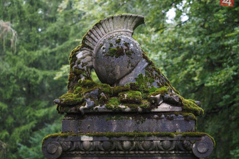 SVET O SLOVENSKU: Cintoríny sú plné vzácneho života