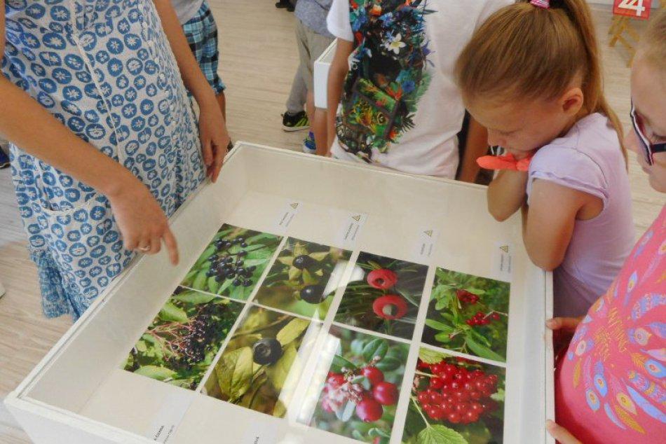 Nová výstava v Považskej: Vlastivedné múzeum o nástrahách prírody