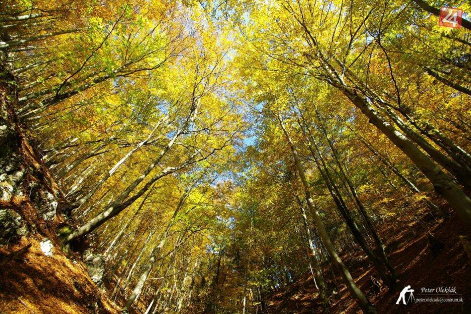 Navnaďte sa na prichádzajúcu jeseň spolu s nami: Krásne zábery zo Spiša