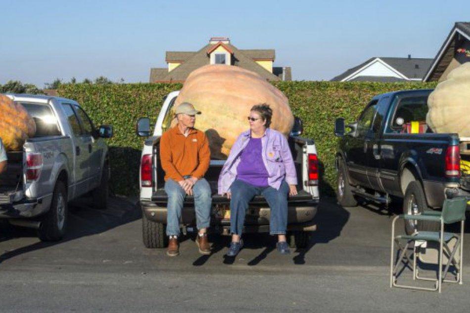 KURIOZITA DŇA: Majstrovstvá pestovateľov tekvíc v USA, najväčšia mala vyše tony!