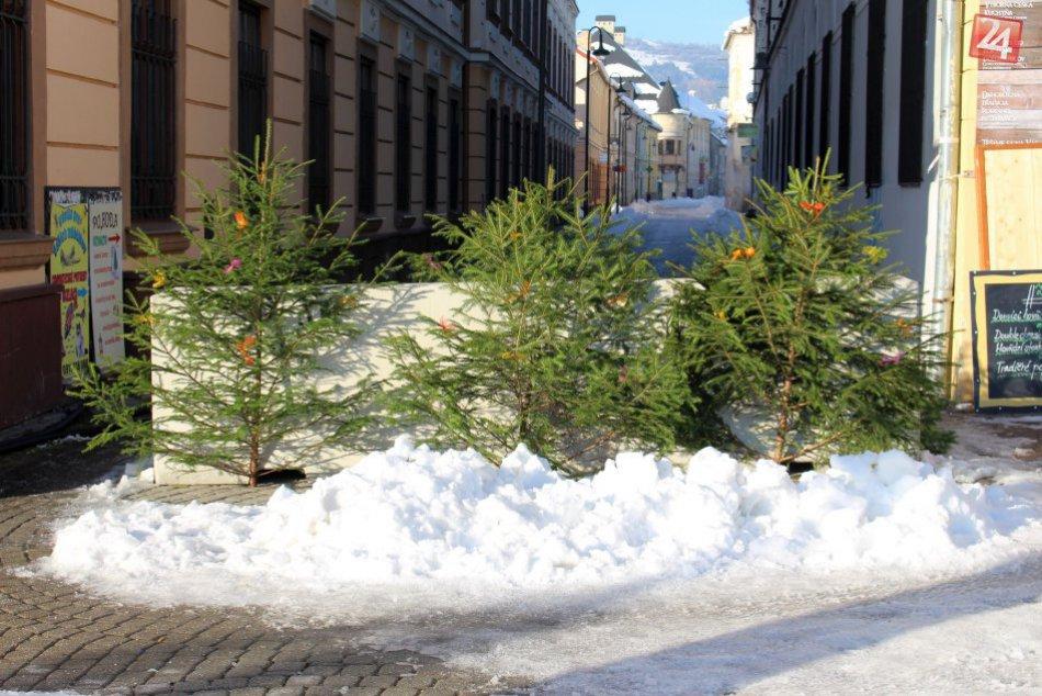 V OBRAZOCH: Betónové zátarasy v centre Bystrice zdobia vianočné stromčeky