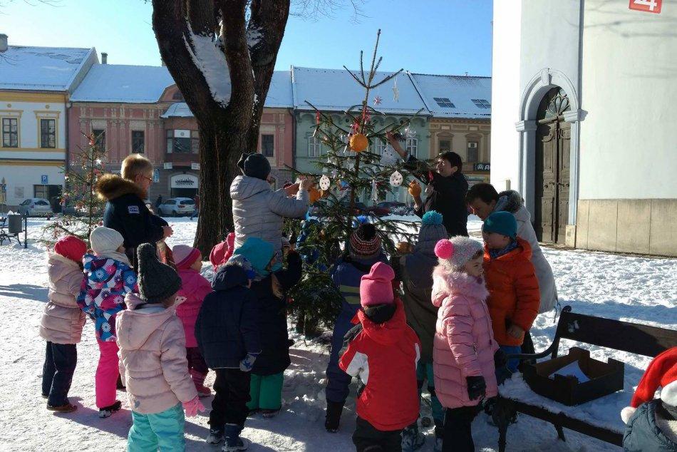 Fotogaléria: Aj takéto vianočné stromčeky môžete obdivovať v Spišskej