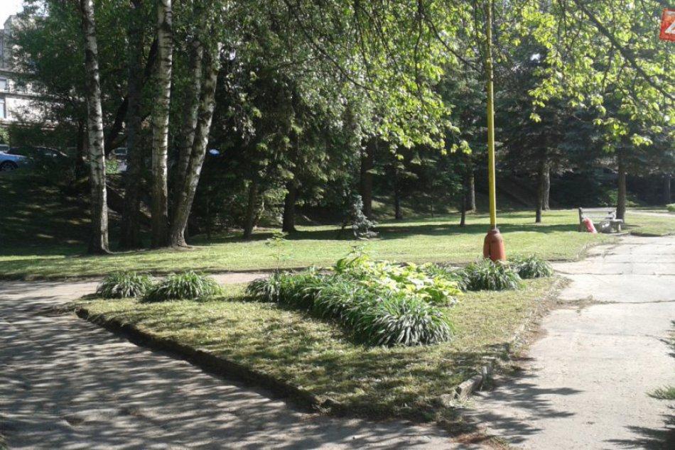 Park pri považskobystrickej nemocnici: Takto aktuálne vyzerá