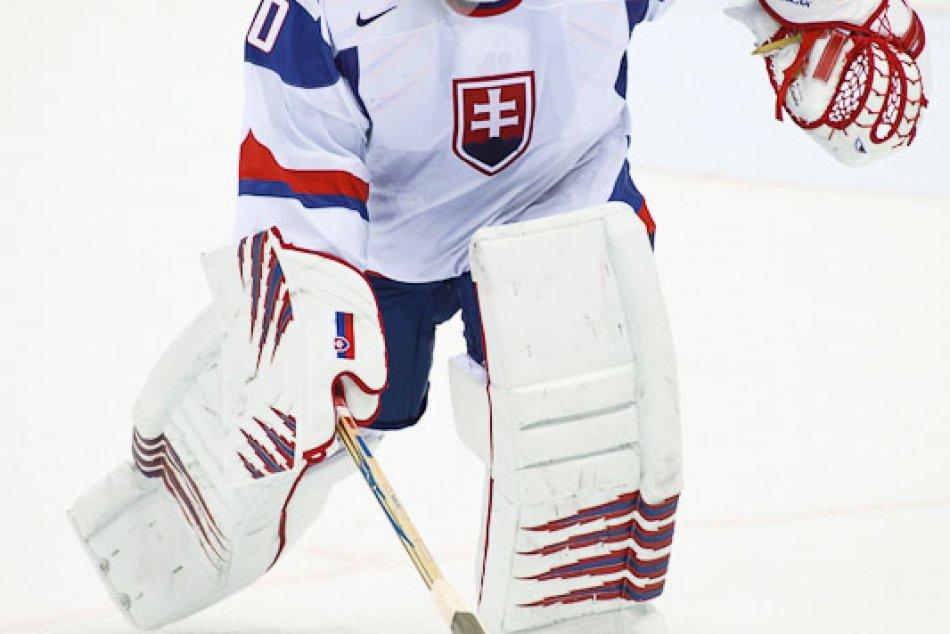 ms hokej