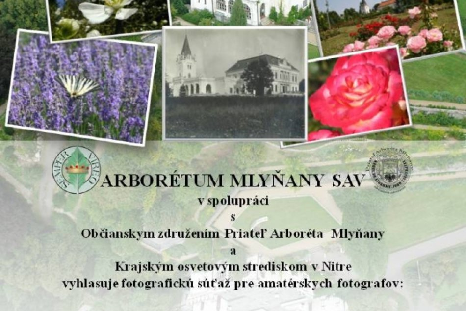Fotosutaz_arboretum