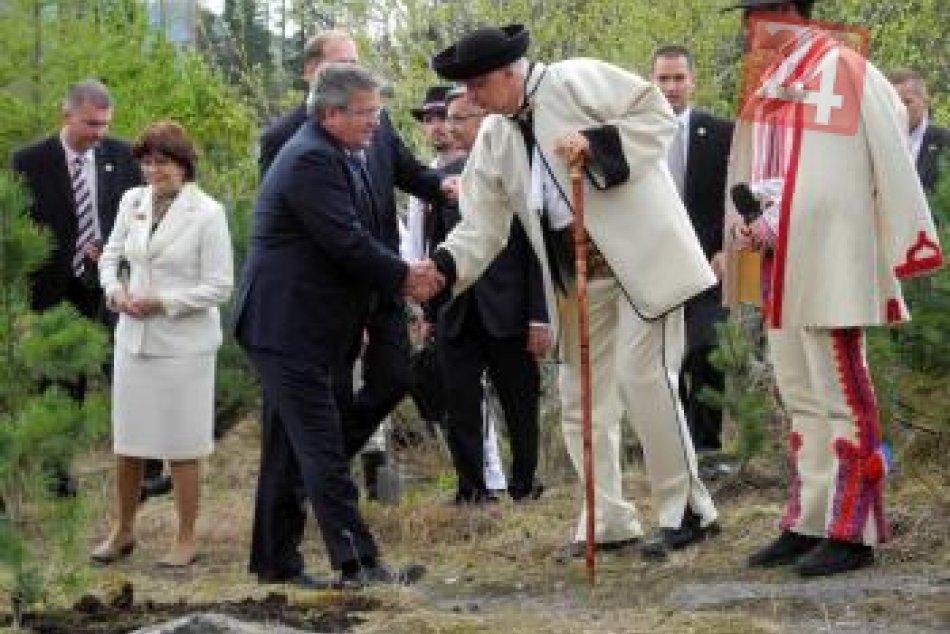 prezidenti_stromy