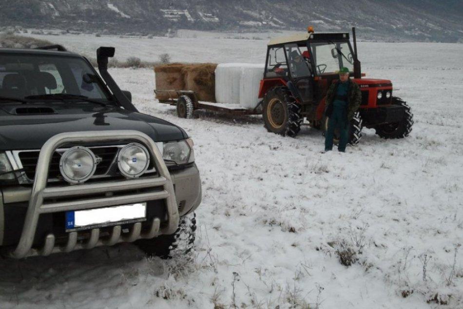 Lesníci sa starajú o lesnú zver aj v zime