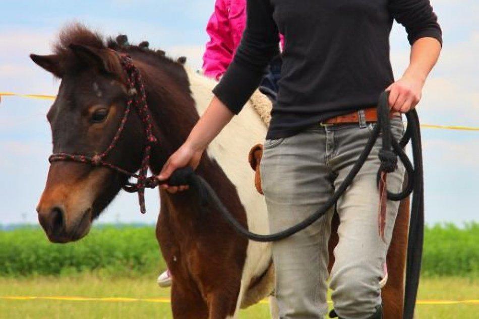 Sila a výbušnosť koní: Neďaleko Nitry si pripomenuli 200 rokov od prvých dostiho