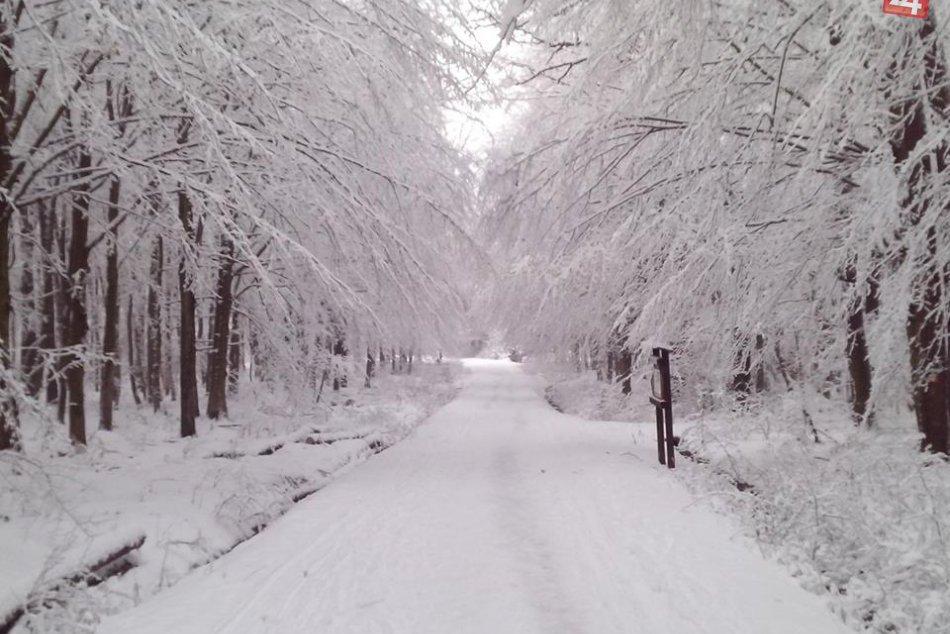 Snehová nádielka vašimi očami obrazom: Takto ste ju zachytili!
