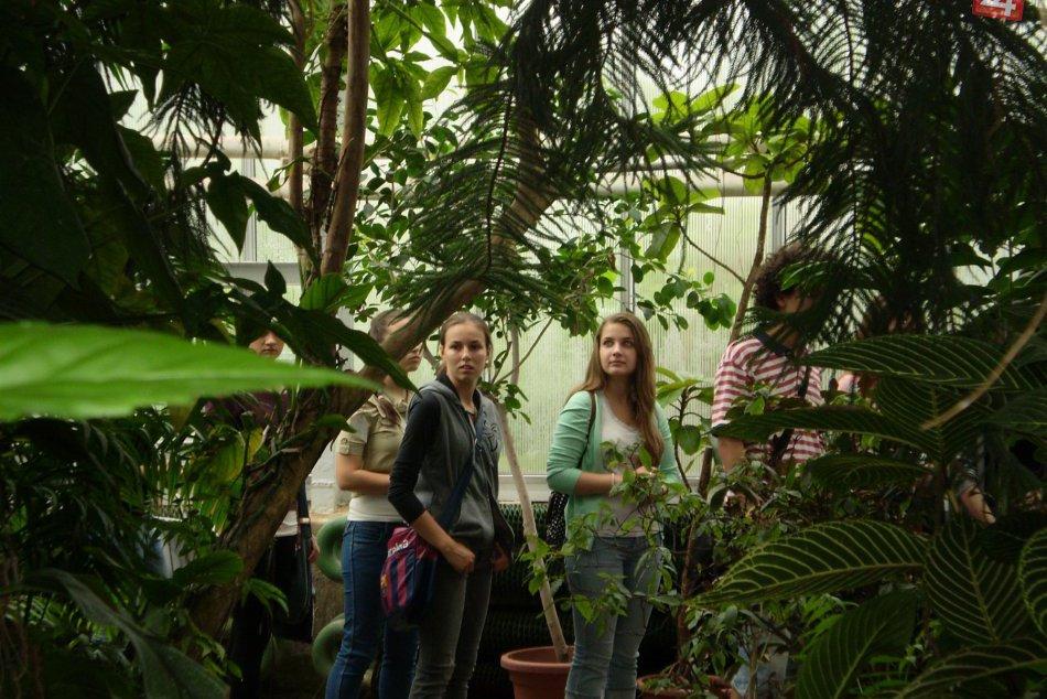 8. ročník výstavy Motýle exotických trópov.