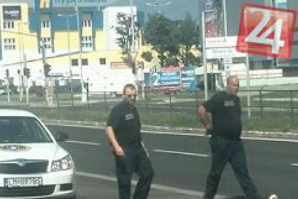 Senzácia na mikulášskom hlavnom ťahu: Takéto zviera chytali policajti na Garbiar