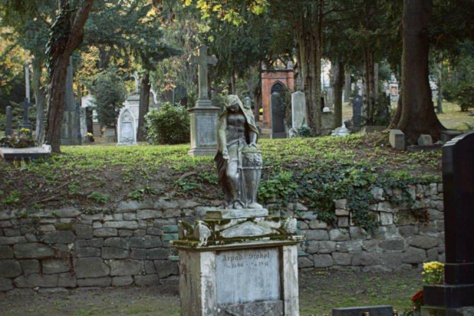 Cintorín Kozia brána