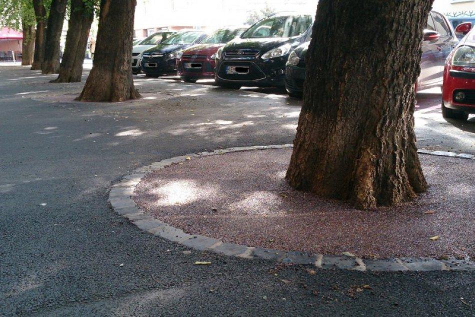 Stromy zaliate betónom