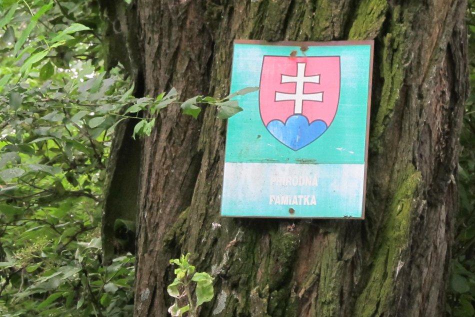 Prírodná pamiatka Bábske jazierko: Zaujímavosť v blízkom okolí