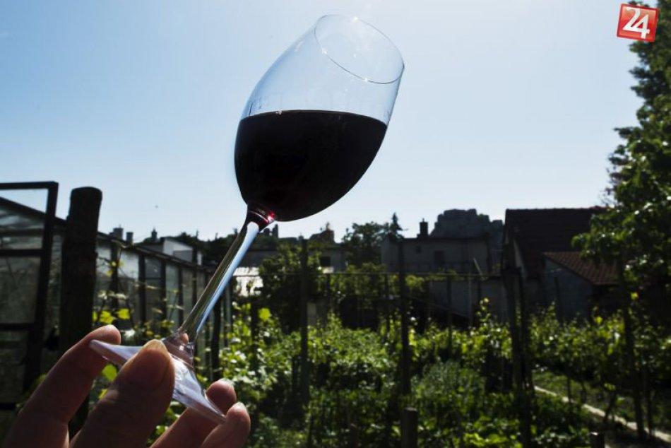 Víno Devín