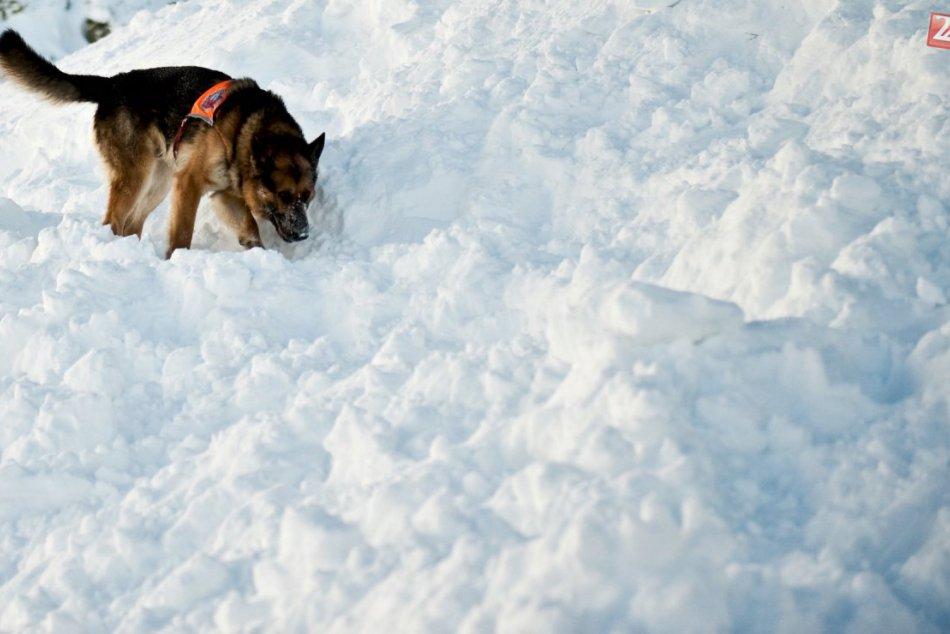 RADÍME: Pred zimnou turistikou v horách sledujte snehové správy a oficiálne výst