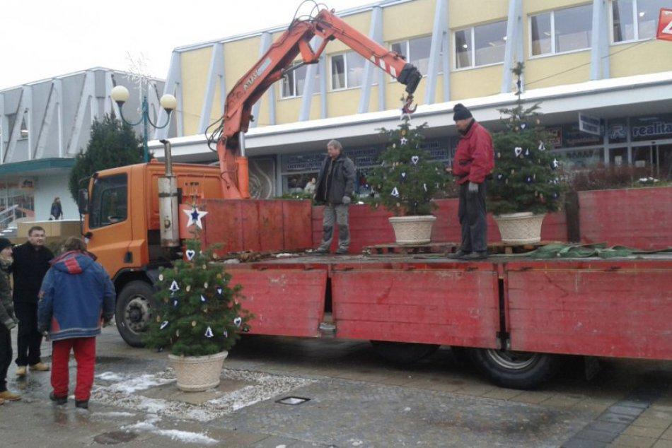 Vianočná výzdoba v Považskej: Stromčeky na pešej zóne