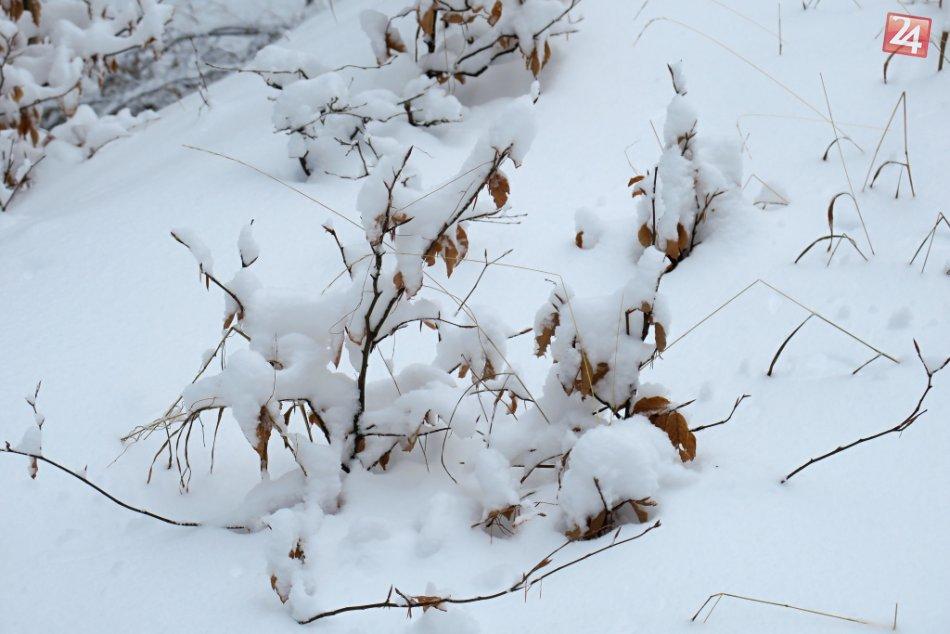 Obrazom: Gemer pod bielou perinou