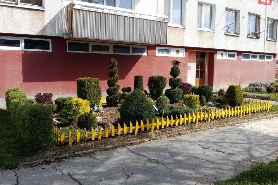 FOTO: Pri bytovke na humenskom sídlisku môžete obdivovať ozajstnú nádheru!