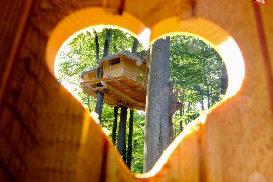 Domčeky v korunách stromov