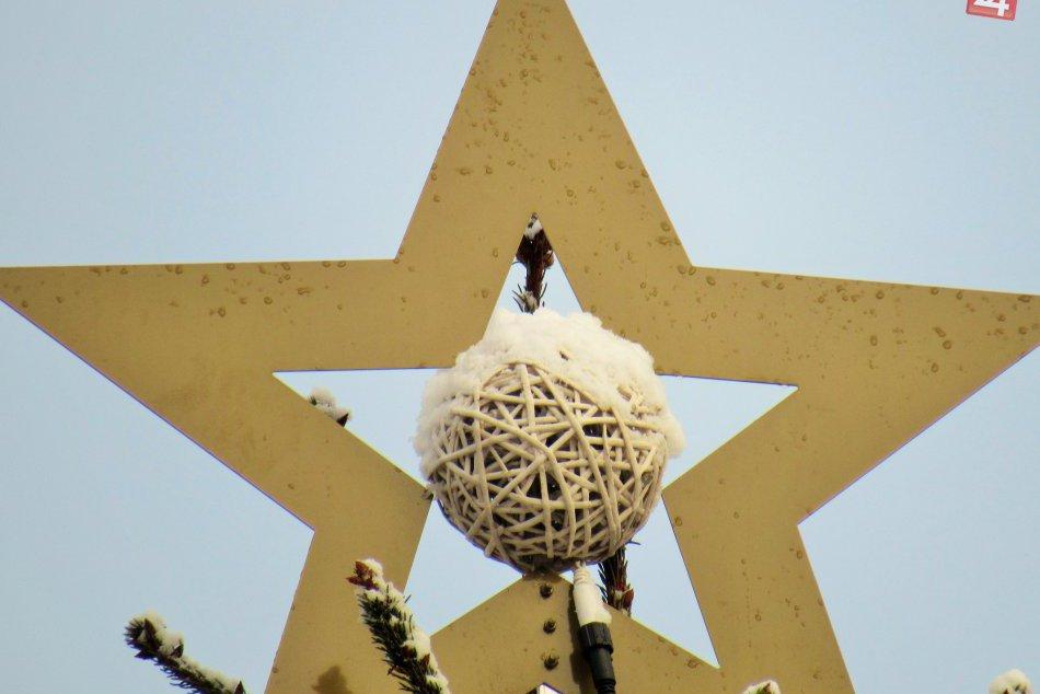 Má charizmu, ktorá očarí aj dospelých: Vianočný stromček je na svojom mieste