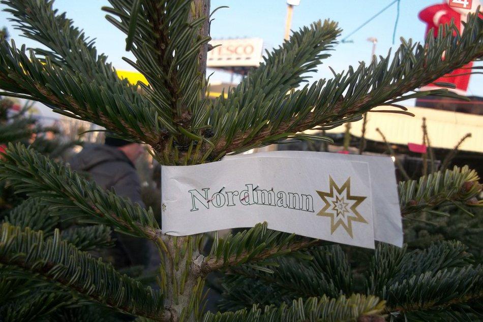 FOTO: V meste predávajú vianočné stromčeky, máte aj Vy svojho favorita?