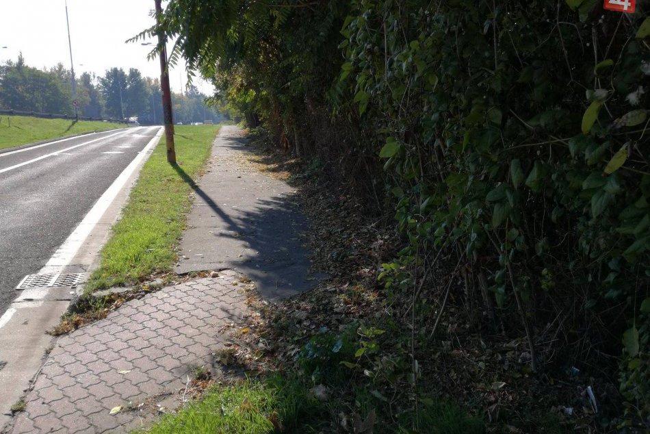 Dobrovoľníci vyčistili cyklochodník na Dolnozemskej.