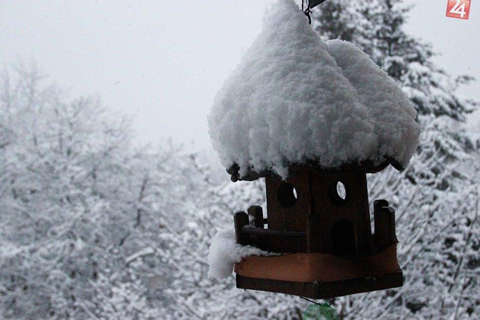 Obrazom: Sneženie v Rožňave a okolí spôsobilo problémy