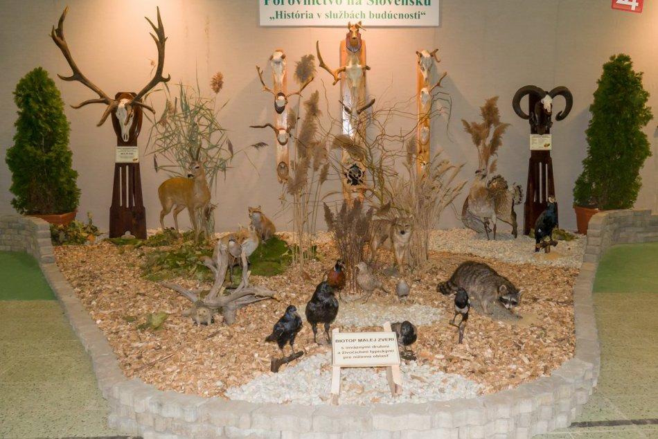 Obrovské akvárium i svetový unikát: Začala sa výstava pre poľovníkov i rybárov,