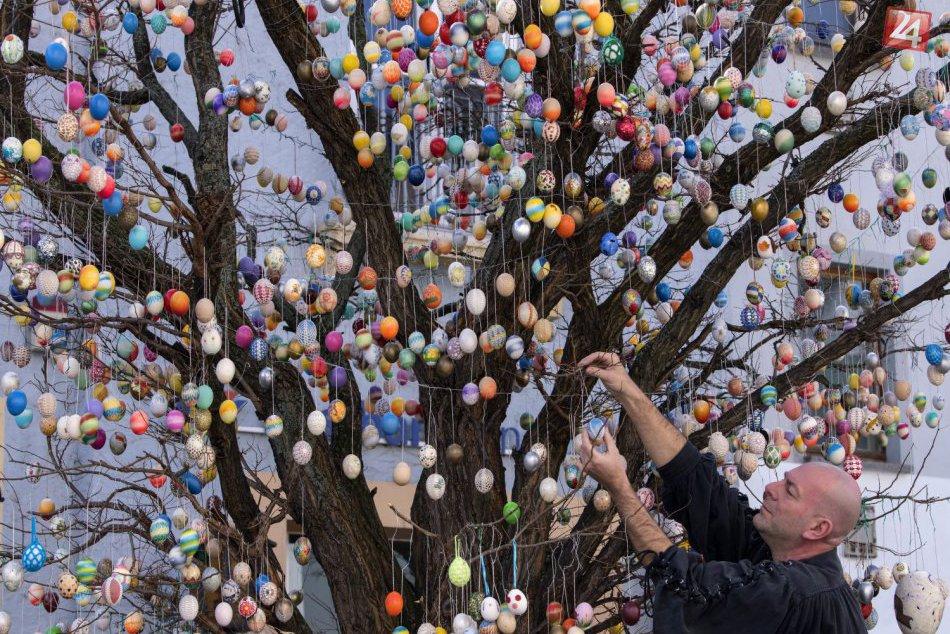 V Nemeckom meste vyzdobili agát 10-tisíc kraslicami