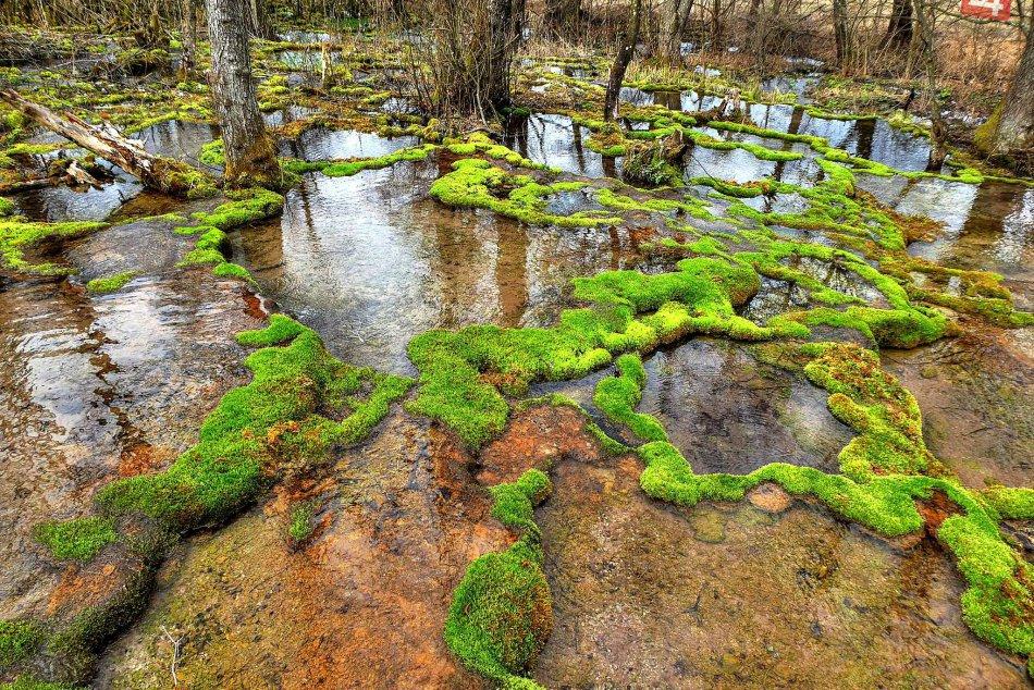Obrazom: Okolie Krásnohorskej jaskyne