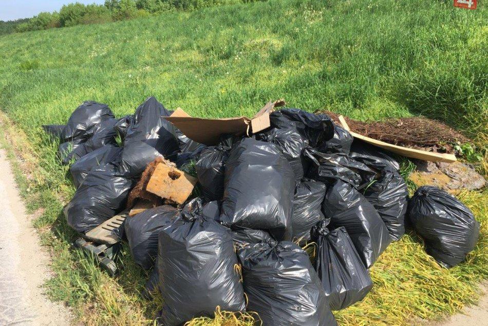 FOTO, V Šali vyčistili lesík: S upratovaním pomohli aj bezdomovci