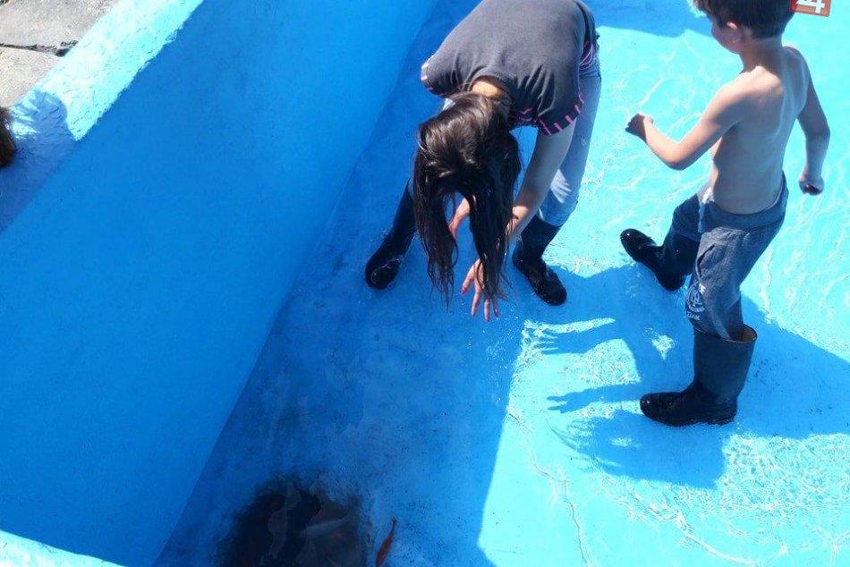 Večianska nádrž pri studni je vyčistená: Rybky potešili aj okoloidúcich, FOTO