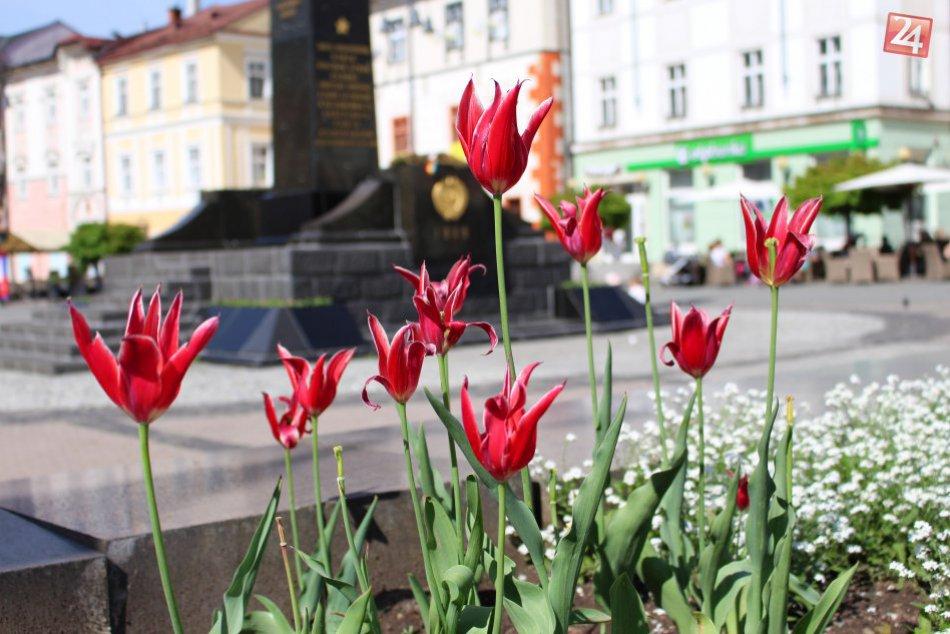 V OBRAZOCH: Bystrica rozkvitla do krásy