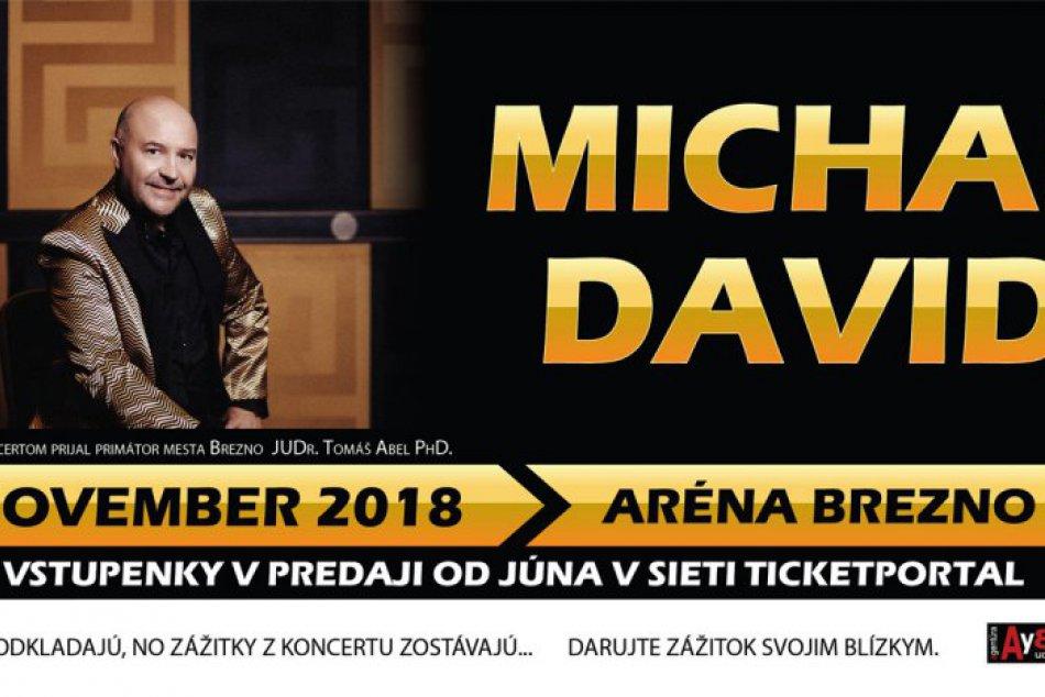 Michal David v Brezne