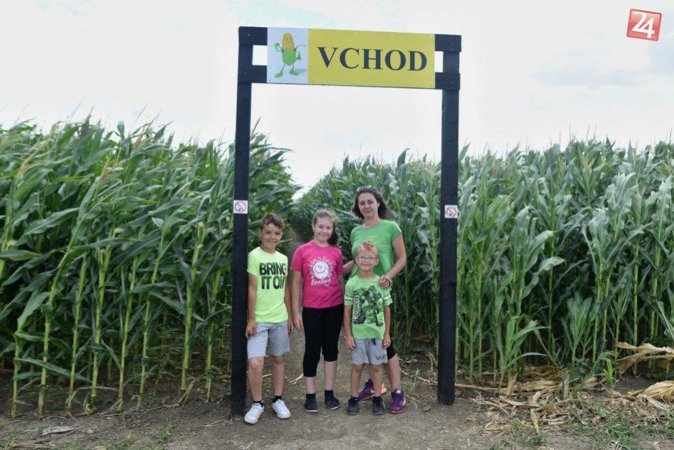 FOTO: Takéto kukuričné bludisko vyrástlo vo Vlčkovciach