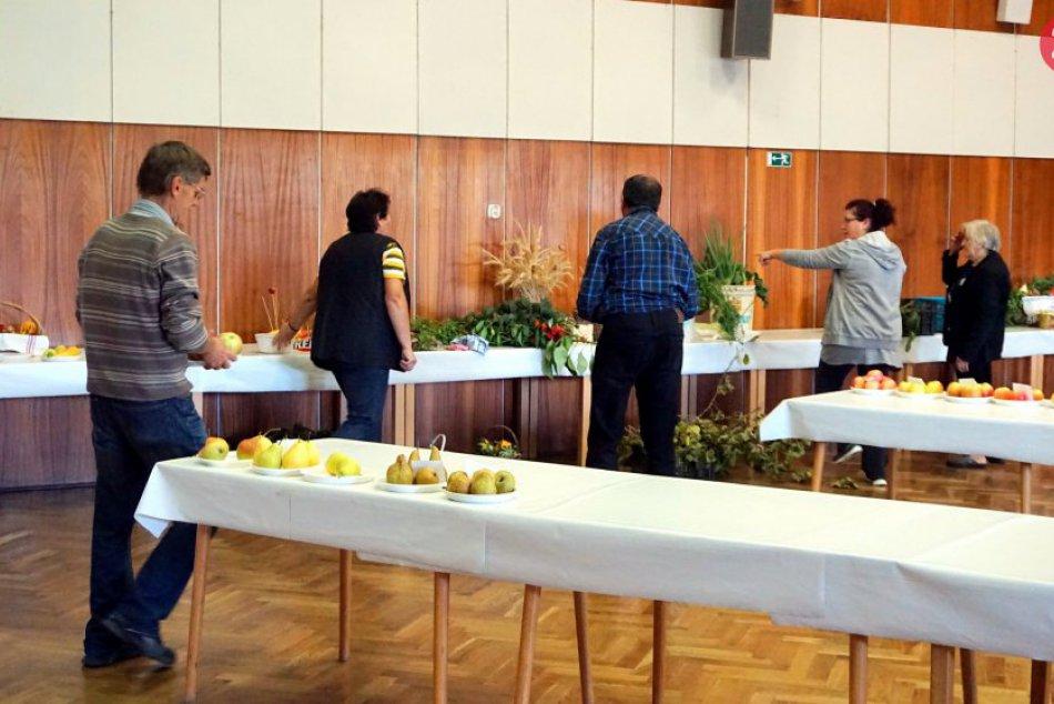 Topoľčianska výstava ovocia, zeleniny, kvetov a okrasných kríkov