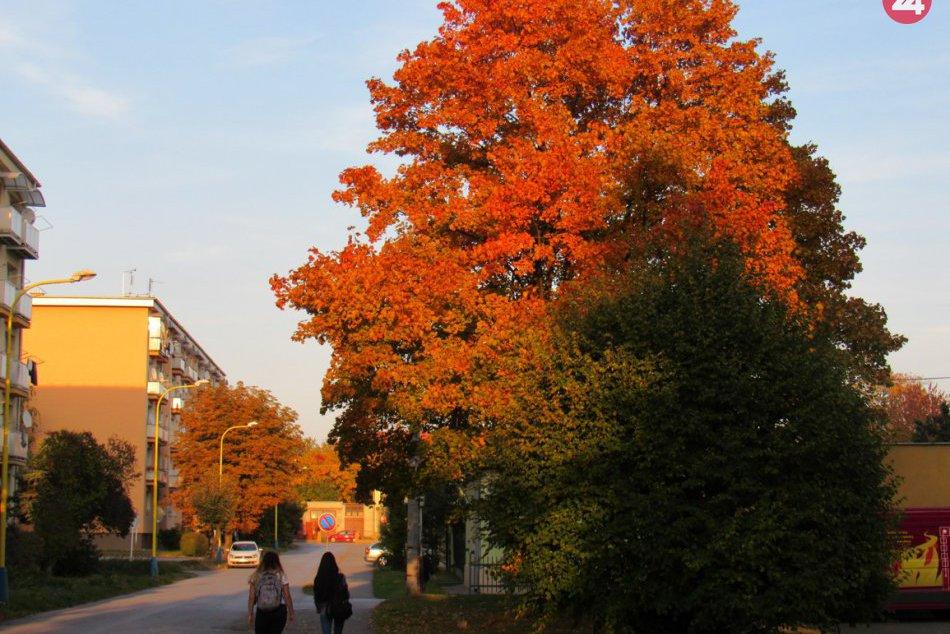 V Prešove už vo veľkom úraduje jeseň: Aj takéto pekné pohľady nám ponúka