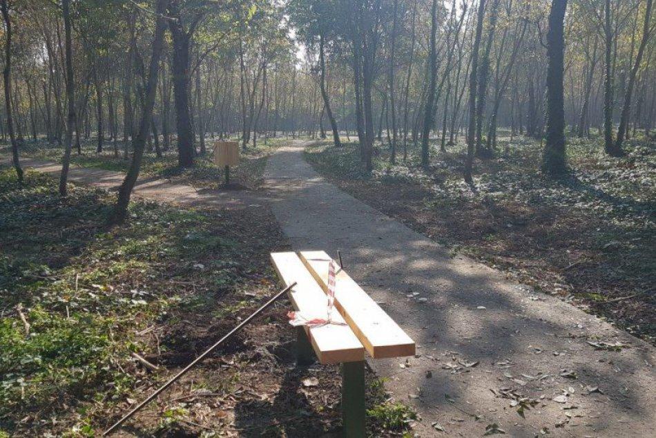 FOTO, V šalianskom lesoparku pribúda mobiliár: Onedlho si zahráte aj ping - pong