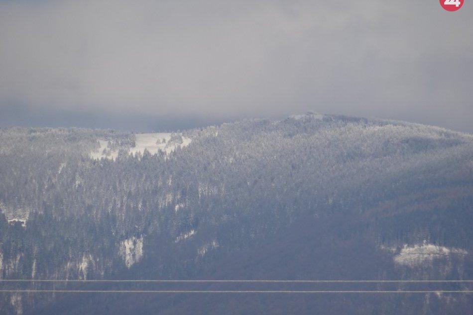 Obrazom: Volovec je už biely