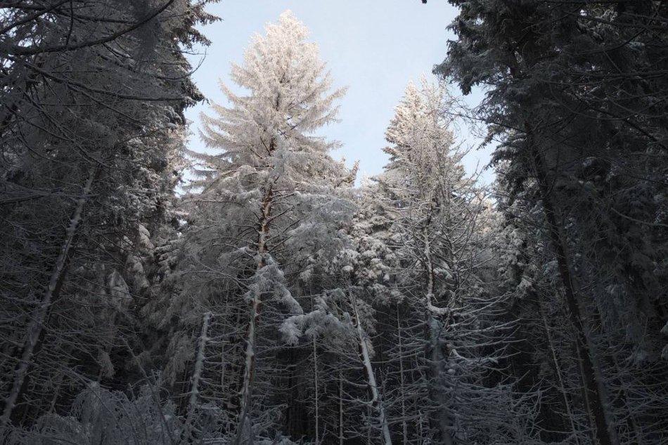 Obrazom: Úchvatné zábery z Volovca, to musíte vidieť