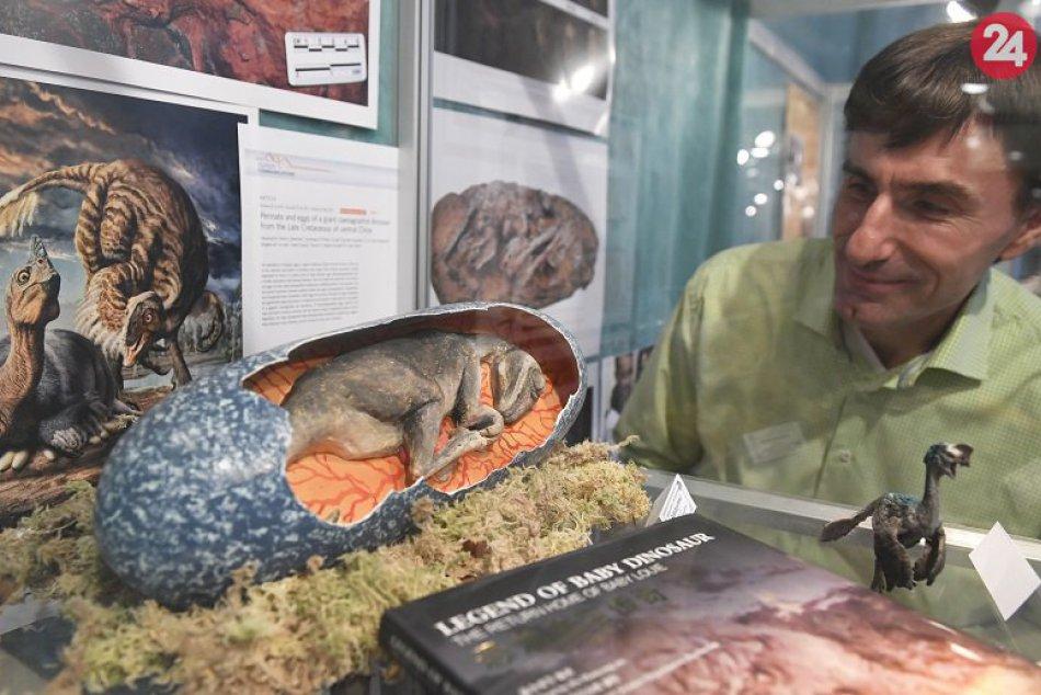 Unikátne objavy košických paleontológov