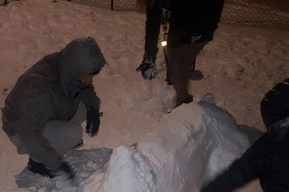 FOTO, KURIOZITA hodná obdivu: Na šalianskom sídlisku majú snežného psa