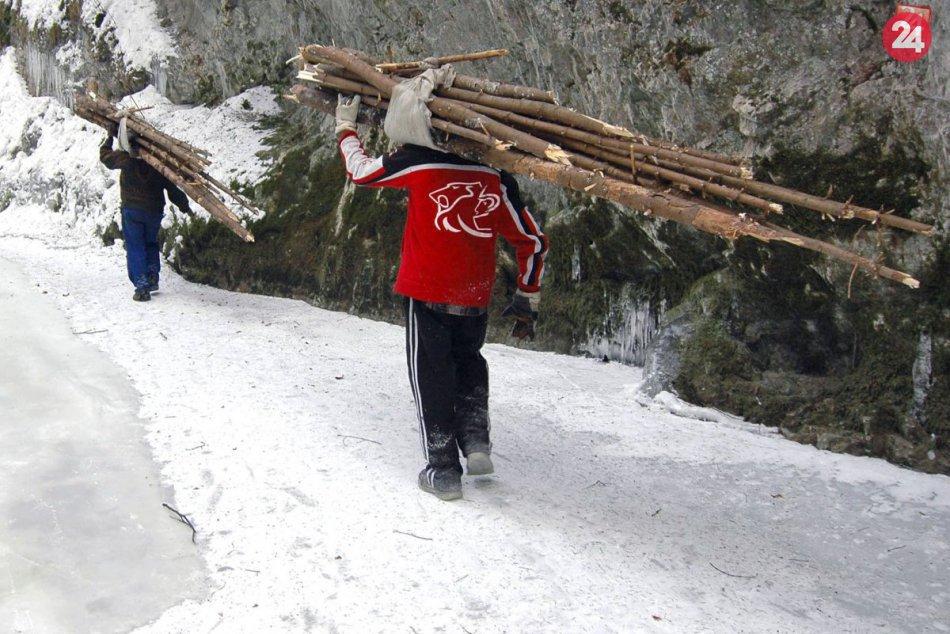 Rómovia a krádež dreva