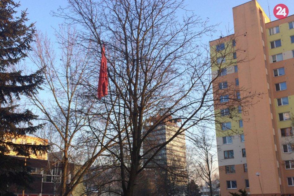 Ružová deka vydržala v Považskej na strome skoro rok: Už je však dole
