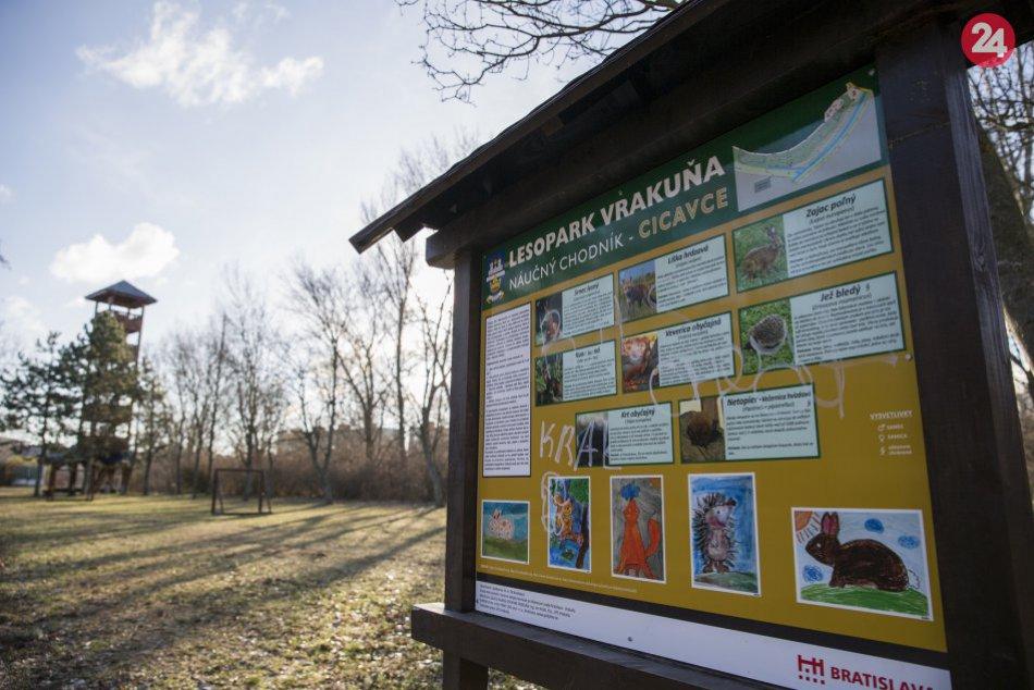 Novootvorená rozhľadňa v lesoparku vo Vrakuni