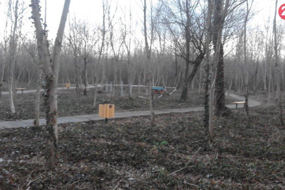 V šalianskom lesoparku sa opäť pracuje: Radnica pokračuje s relax zónou, FOTO