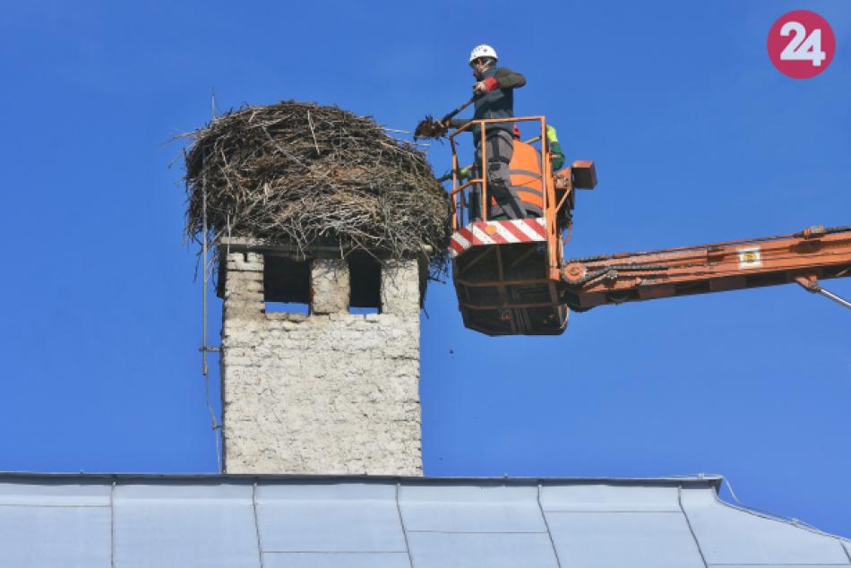 Bocianie hniezdo na mestskom úrade v Spišskej Belej vážilo viac ako tonu